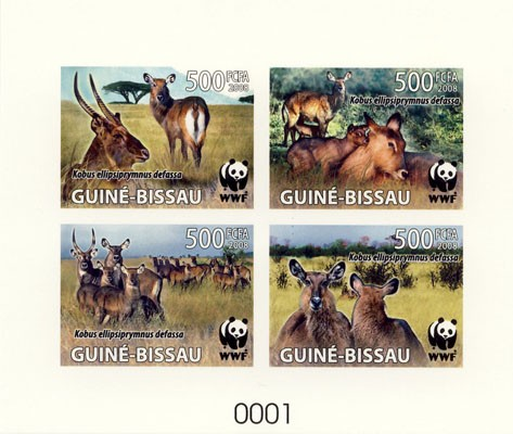 WWF De Luxe sheet with 4v - Issue of Guinée-Bissau postage stamps