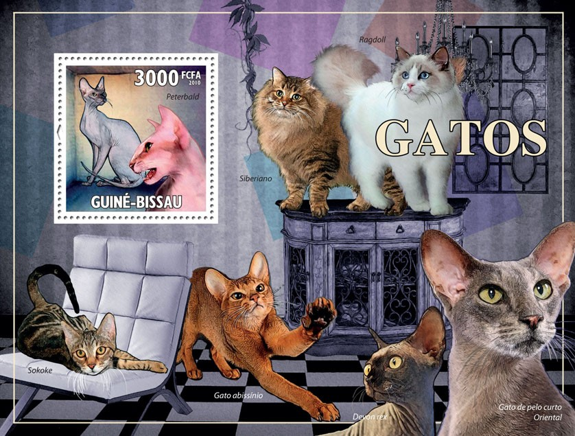 Cats - Issue of Guinée-Bissau postage stamps