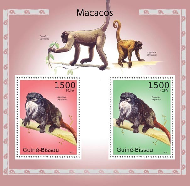 Macaques - Issue of Guinée-Bissau postage stamps