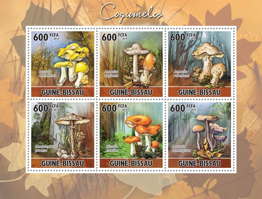Mushrooms. - Issue of Guinée-Bissau postage stamps