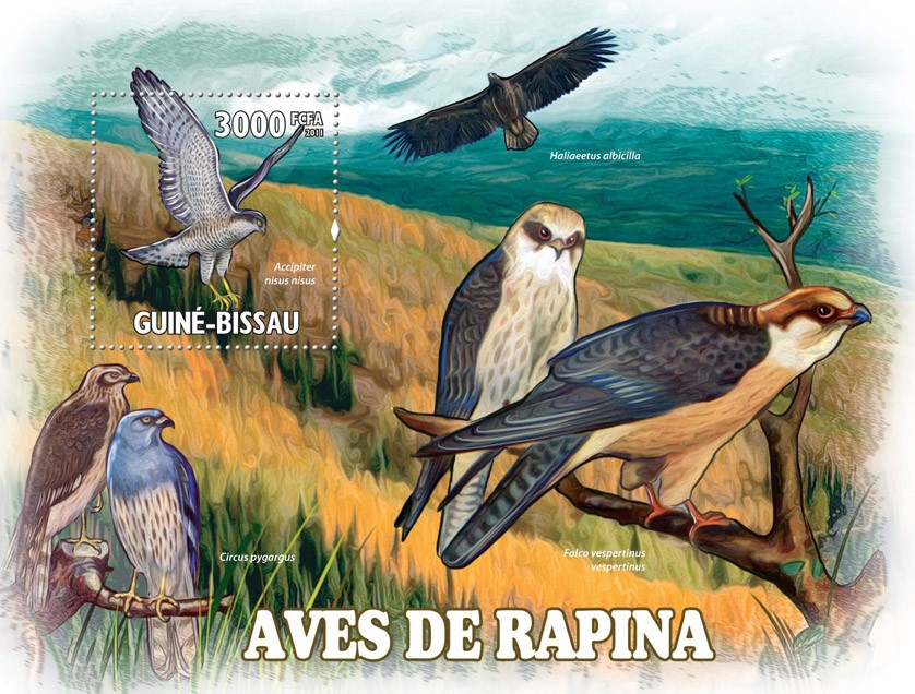 Raptors ( Birds ). - Issue of Guinée-Bissau postage stamps
