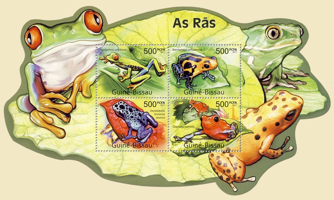 Frogs, (Agalychnis callidryas, Oophaga pumilo). - Issue of Guinée-Bissau postage stamps