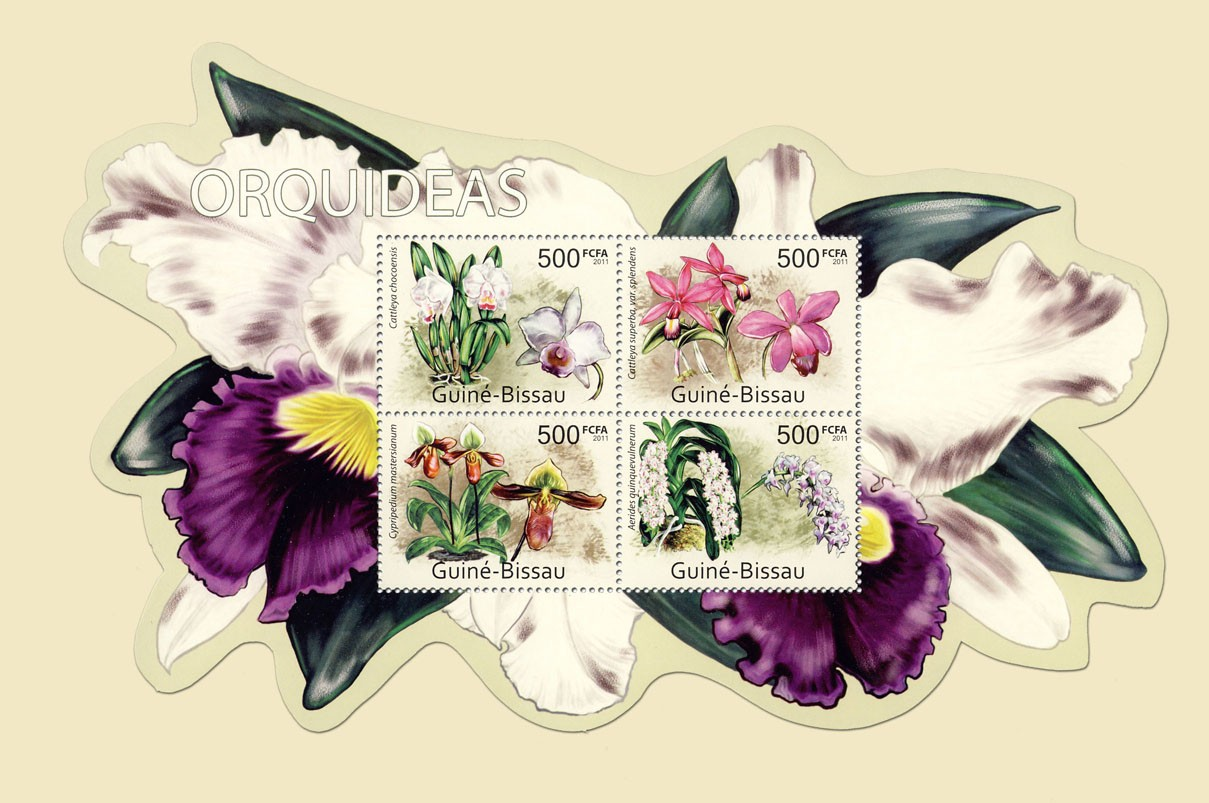 Orchids, (Cattleya chocoensis, Aerides guinquevulnerum). - Issue of Guinée-Bissau postage stamps