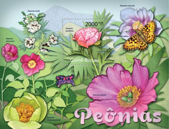 Peony Flowers, (Paeonia lactiflora). - Issue of Guinée-Bissau postage stamps