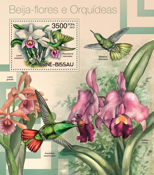 Colibri and orchids - Issue of Guinée-Bissau postage stamps