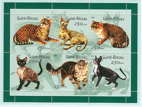 Chats - Cats          6 x 250 FCFA - Issue of Guinée-Bissau postage stamps
