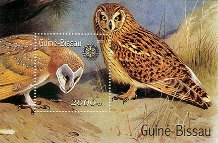Hiboux (Rotary) - Owls   2000 FCFA S/S - Issue of Guinée-Bissau postage stamps