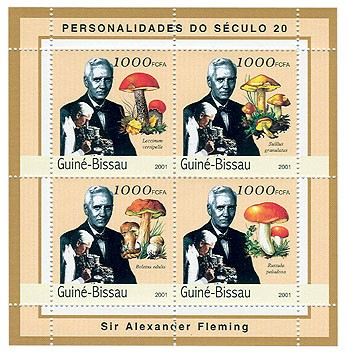 Alexander Fleming ( mushrooms)    4 x 1000 FCFA - Issue of Guinée-Bissau postage stamps