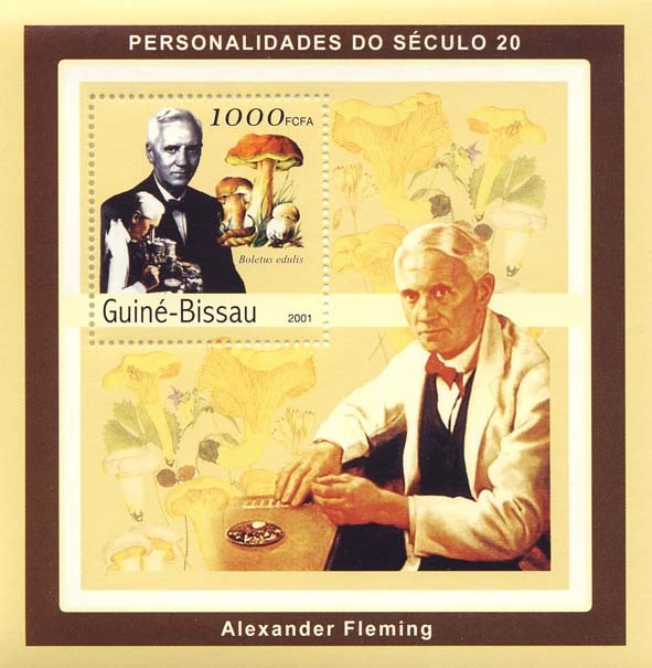 Alexander Fleming ( mushrooms) S/S - Issue of Guinée-Bissau postage stamps