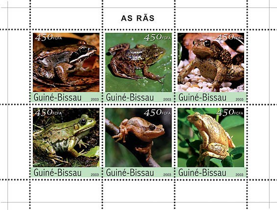 Frogs 6v x450 - Issue of Guinée-Bissau postage stamps