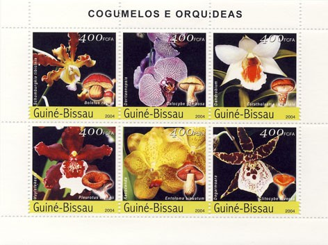 Orchids & Mushrooms 6 x 400 F - Issue of Guinée-Bissau postage stamps