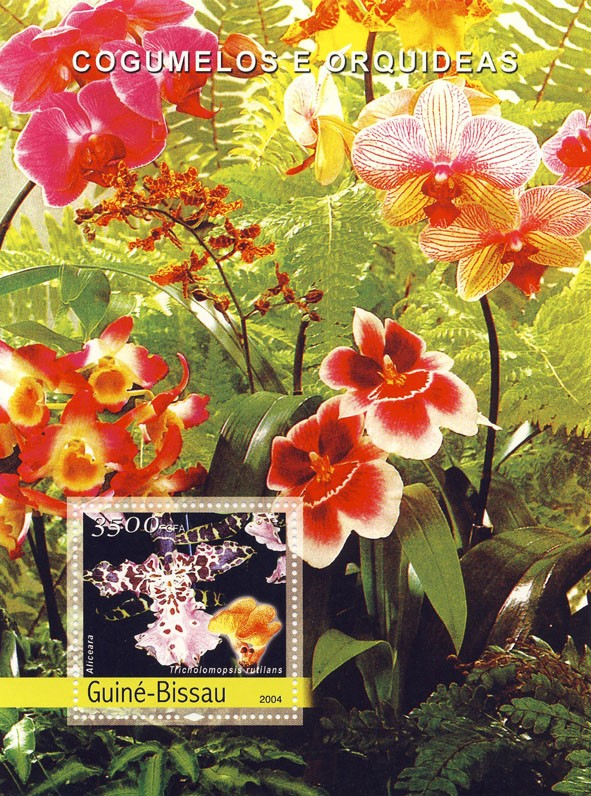 Orchids & Mushrooms 3500 F - Issue of Guinée-Bissau postage stamps