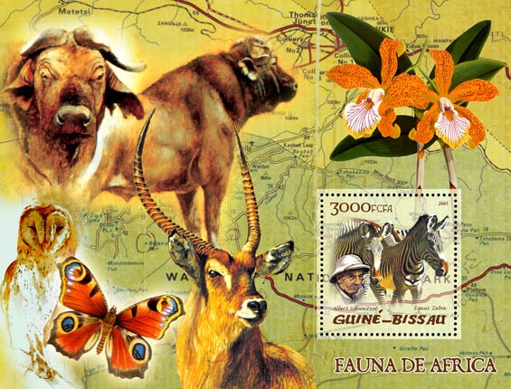 Fauna of Africa (zebra, owl, butterfly), also A. Schweitzer & orchid S/s 3000 - Issue of Guinée-Bissau postage stamps