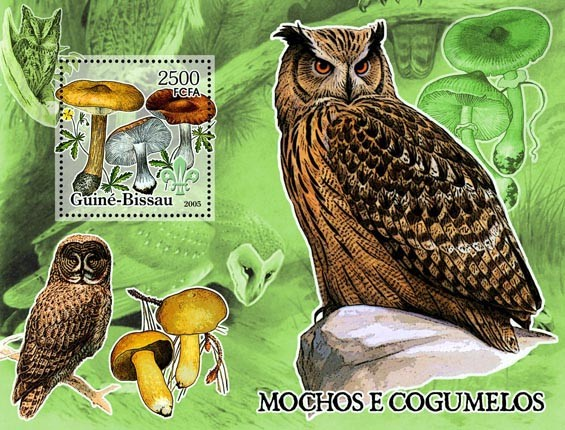 Owls & Mushrooms S/s 2500 - Issue of Guinée-Bissau postage stamps