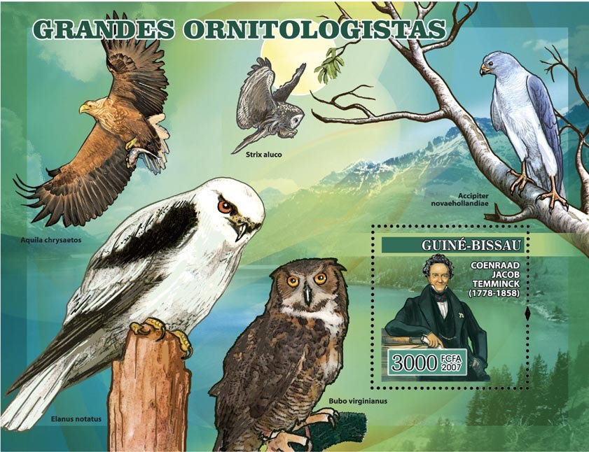 Ornithologists Owls Birds of Prey s/s 3000 - Issue of Guinée-Bissau postage stamps