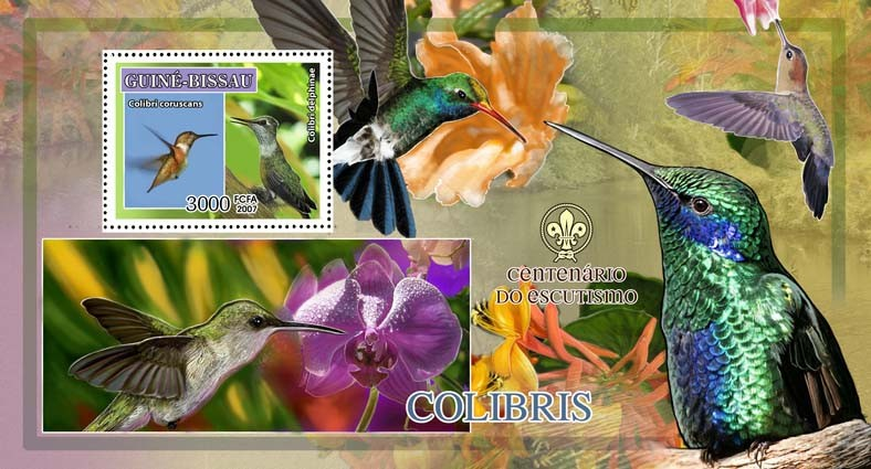 Birds - colibris - scouts logo s/s - 3000 FCFA - Issue of Guinée-Bissau postage stamps