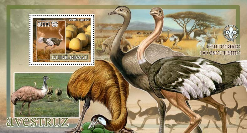Birds - ostrich - scouts logo s/s - 3000 FCFA - Issue of Guinée-Bissau postage stamps