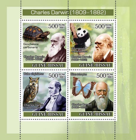 Charles Darwin / Turtle / Owl / Panda /  Butterfly 4vx500 - Issue of Guinée-Bissau postage stamps