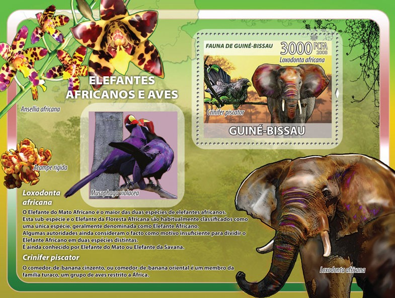 African Elephants, birds, orchids s/s - Issue of Guinée-Bissau postage stamps