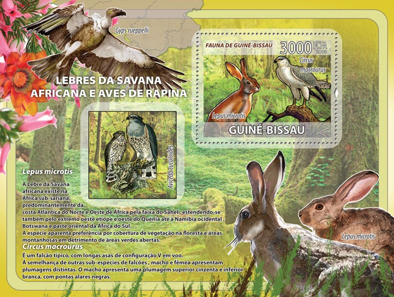 African Savannah Rabbits, birds of prey s/s - Issue of Guinée-Bissau postage stamps