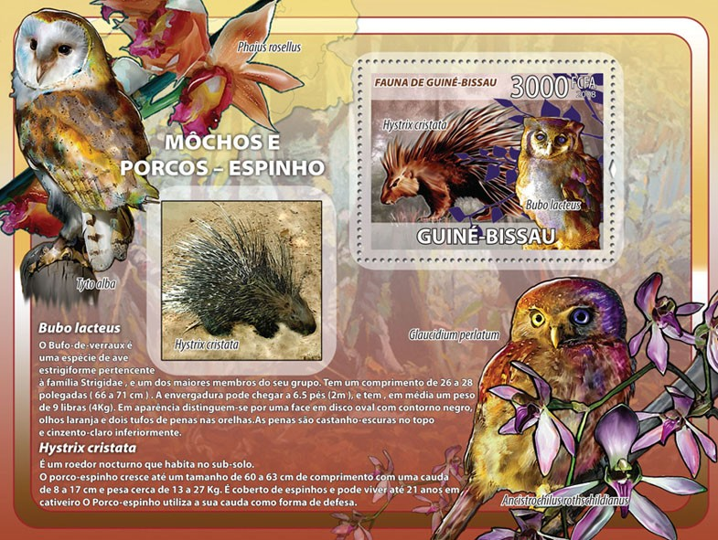 Owls, porcupines, orchids s/s - Issue of Guinée-Bissau postage stamps