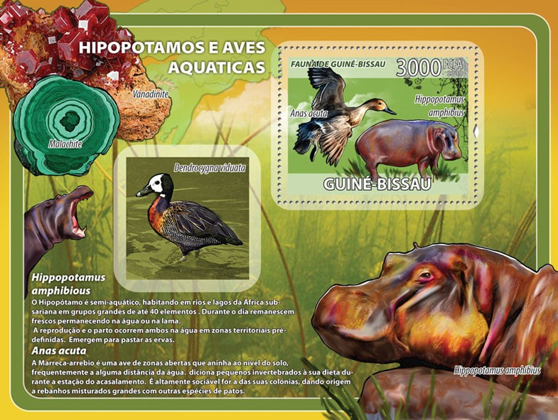 Hippos, birds, minerals s/s - Issue of Guinée-Bissau postage stamps