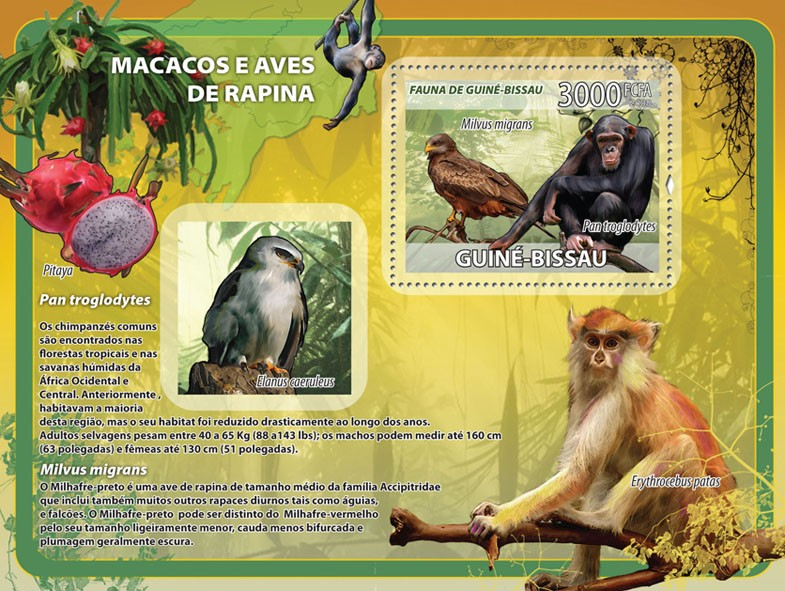 Macaques, birds of prey, fruits s/s - Issue of Guinée-Bissau postage stamps