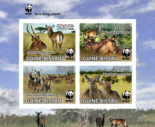 WWF Set of 4 values - Imperforated 4v x 500 FCFA - Issue of Guinée-Bissau postage stamps
