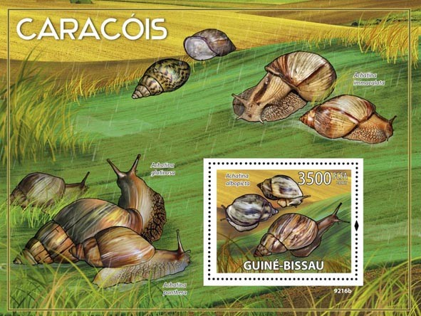Snails of Africa - Issue of Guinée-Bissau postage stamps