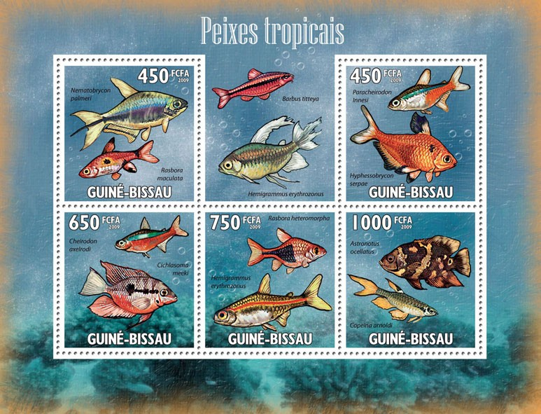 Tropical Fishes - Issue of Guinée-Bissau postage stamps