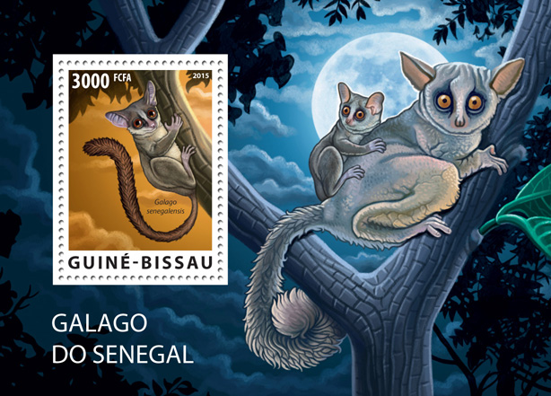 Galago (souvenir sheet) - Issue of Guinée-Bissau postage stamps