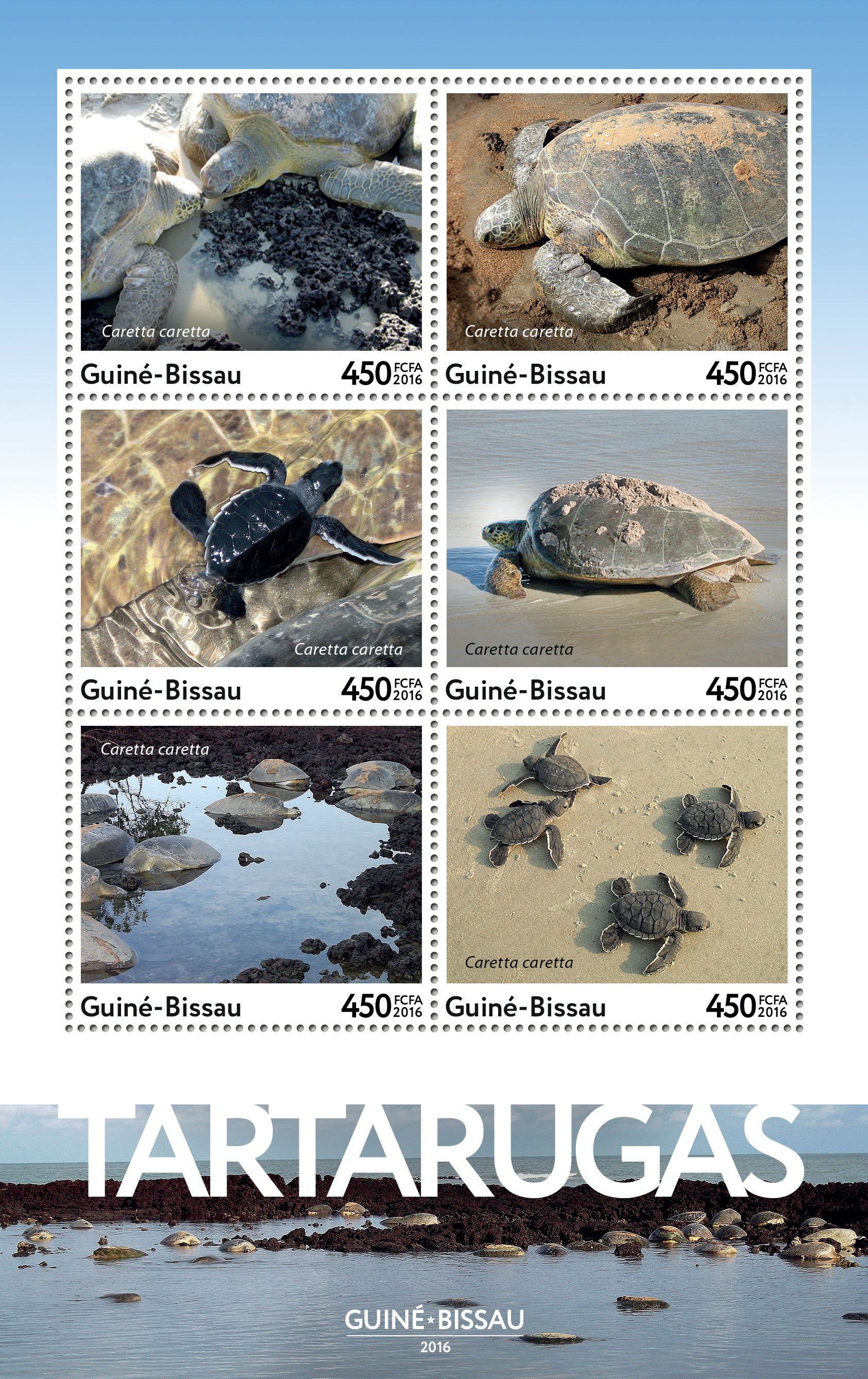 Turtles 6v - Issue of Guinée-Bissau postage stamps