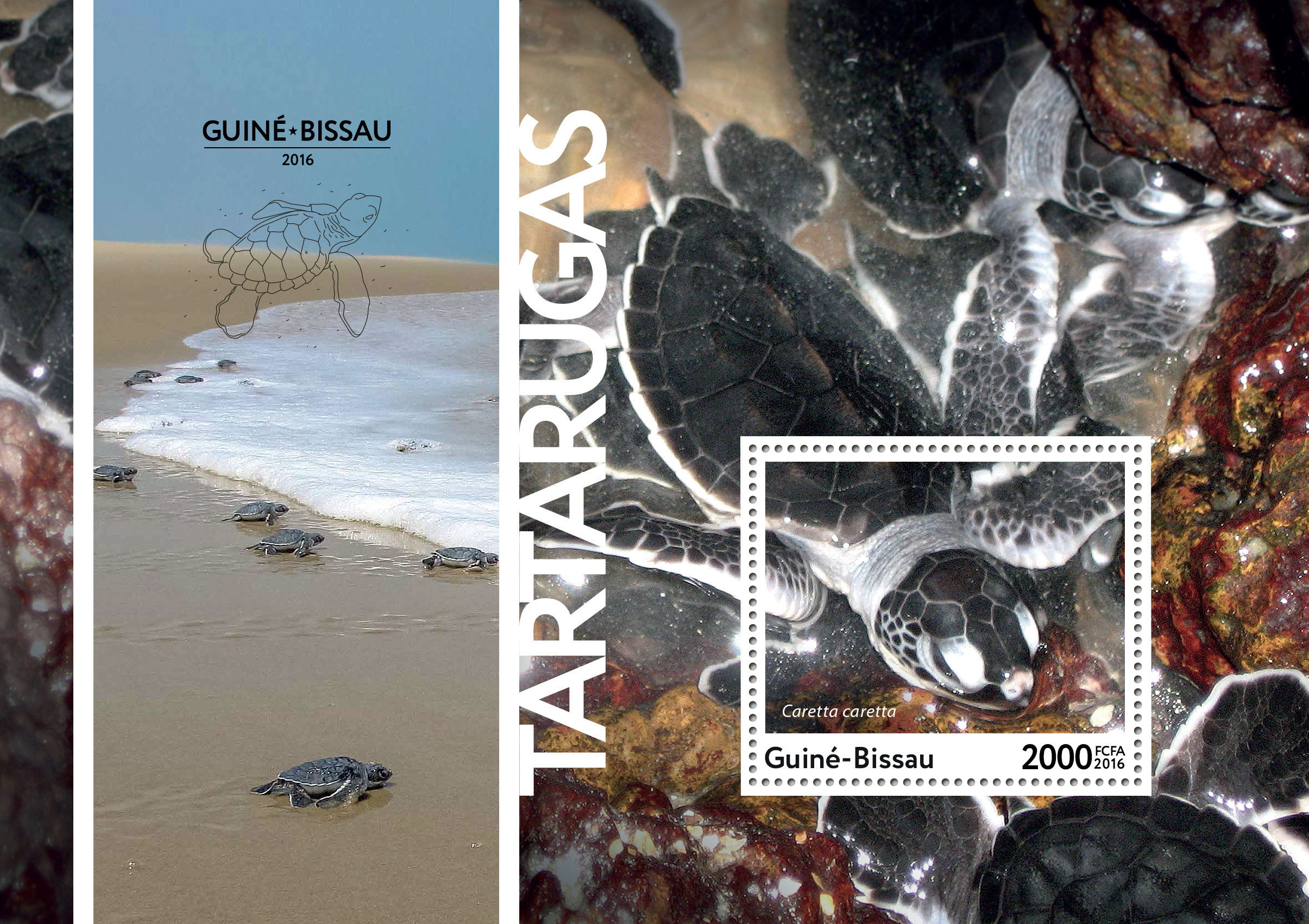 Turtles s/s - Issue of Guinée-Bissau postage stamps