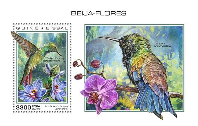 Hummingbirds - Issue of Guinée-Bissau postage stamps