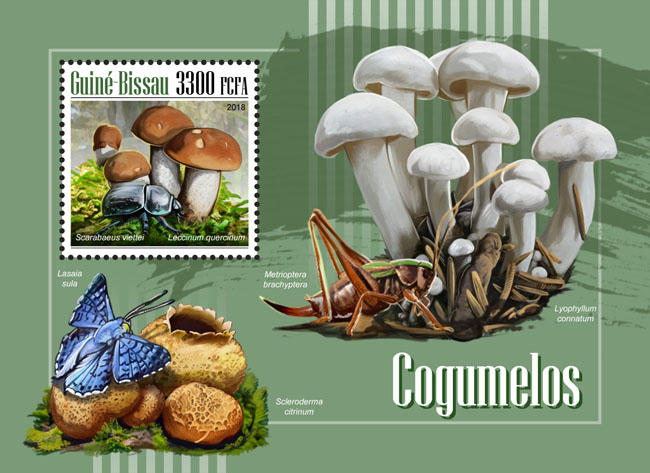 Mushrooms - Issue of Guinée-Bissau postage stamps