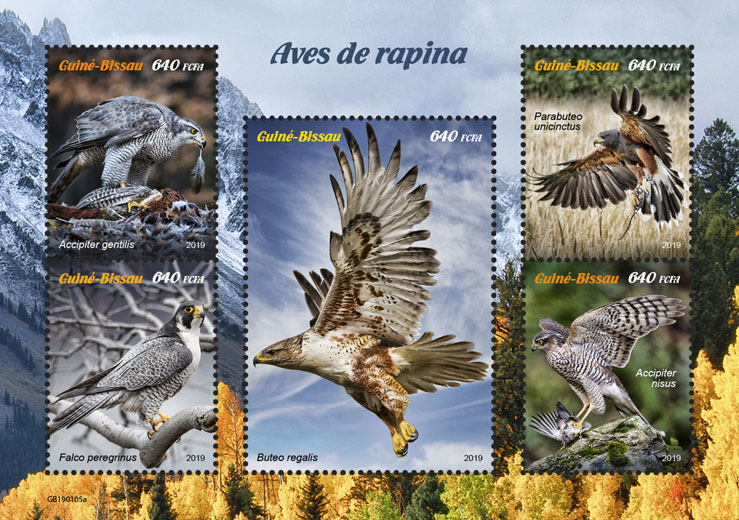 Birds of prey - Issue of Guinée-Bissau postage stamps
